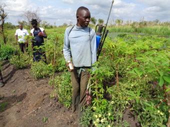 Ein Jugendlicher zeigt nach seiner Ausbildung auf seiner Parzelle eindrückliches Engagement und hohe Produktivität