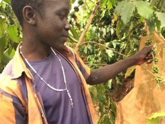 Ein Jugendlicher aus dem Programm wurde unterstützt bei der Aufnahme seiner Arbeit auf seiner Kaffeepflanzung. So kann er ein eigenes Einkommen erwirtschaften.