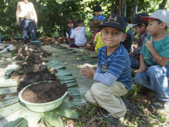 Die Kinder und Jugendlichen Teilnehmenden des Bildungsprogramms werden in die Geheimnisse der lokalen Kaffeeproduktion eingeführt.
